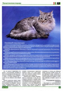Журнал Звери - &#039&#039О породе&#039&#039 стр.2